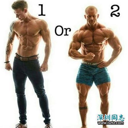 1 和 2,哪个身材是你的菜?